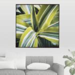Quadro Botânico Dracena em Tecido Canvas para Sala Quarto Hall Escritório, 112X112cm, Quadro Emoldurado