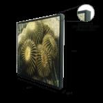 """Quadro em Tecido Canvas """"Cacto Grusoni"""" para Área Externas Sala Hall Corredores, Quadro em Madeira Emoldurado na cor Preto"""