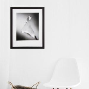 Quadro Floral Copo de leite p/ Sala Quarto Hall Escritório, 31x38cm c/ Vidro 2mm e Moldura em Madeira na Cor Tabaco