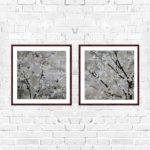 """Quadro Cerejeira Branca """"A & B"""" para Sala Quarto Hotéis Escritório, 50x50cm C/ Vidro 2mm e Moldura na cor Tabaco"""