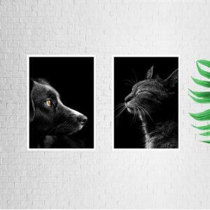 """Quadro Animal Cão e Gato """"A & B"""" para Sala Quarto Hall Escritório, 35x50cm C/ Vidro 2mm e Moldura na cor Preta"""