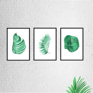 """Conjunto de Quadros Botânicos  """"ABC 2"""" para Sala Quarto Hall Escritório, 35x50cm C/ Vidro 2mm e Moldura na cor Preta"""