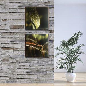 Par de Quadros Botânicos Water Droplets em Tecido Canvas para Sala Quarto Hall Escritório, 60X60cm, Quadro Emoldurado, Moldura na cor Tabaco
