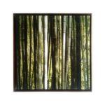 Par de Quadros Botânicos Bambuzal em Tecido Canvas para Sala Quarto Hall Escritório, 60X60cm, Quadro Emoldurado, Moldura na cor Tabaco