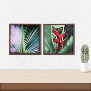 Par de Quadros Botânico 2 para Sala Quarto Hotéis Escritório, 32x32cm C/ Vidro 3mm e Moldura em Madeira na cor Tabaco