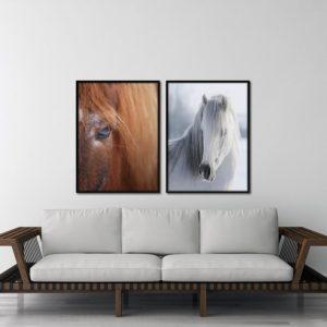 Par de Quadros Cavalo Ruivo e Branco, para Sala Quarto Hotéis Escritório, 120x80cm C/ Vidro 3mm e Moldura na Cor Preta