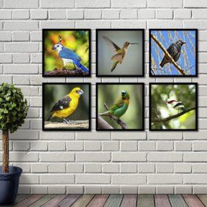 Conjunto de Quadros Pássaros para Sala Quarto Hotéis Escritório, 50x50cm C/ Vidro 3mm e Moldura na Cor Preta