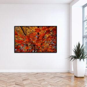 Quadro Arvore de Folhas Laranja para Sala Quarto Hotéis Escritório, 140x70cm C/ Vidro 3mm e Moldura na Cor Preta