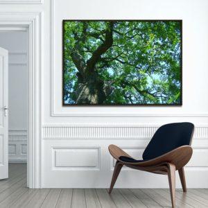 Quadro Árvore Verde, Sala Quarto Hotéis Escritório, 140x100cm, Vidro 3mm e Moldura na Cor Tabaco